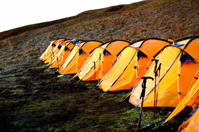 Pic: Tents at Patar