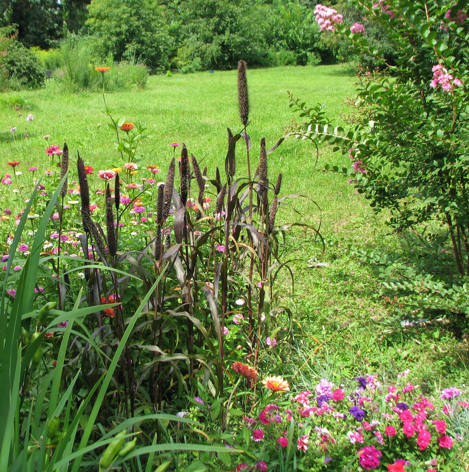 Gradina cu flori perene design cu plante arhitect peisagist firma ammenajare gradina cu flori gazon