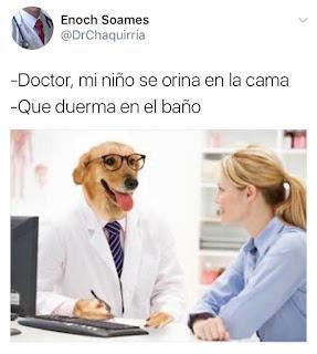 meme dogtor