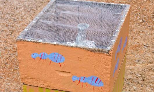 Κατασκευή παγίδας για σφήκες και σκούρκους: Πατέντα μελισσοκόμου
