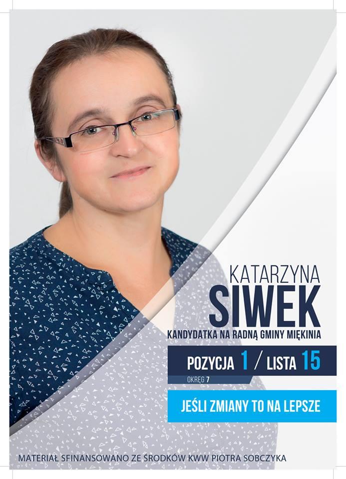 Kronika Wilkszyna Wybory Samorządowe 2018 Plakaty