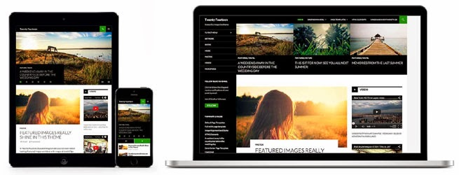 twenty fourteen wordpress themes
