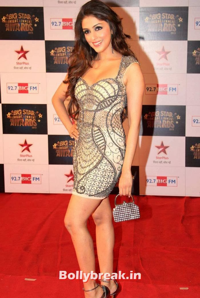 Aarti Chabria, Tv babes Sizzle on Big Star Entertainment Awards 2013 Red Carpet