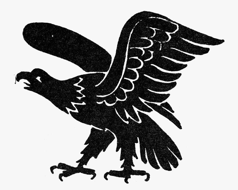 Rules of the Jungle: Eagle Symbols