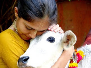 Cow Worship in Hinduism