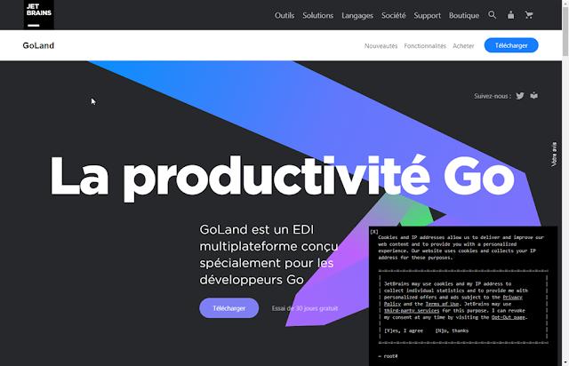 JetBrains - IDE GoLand pour le langage Go