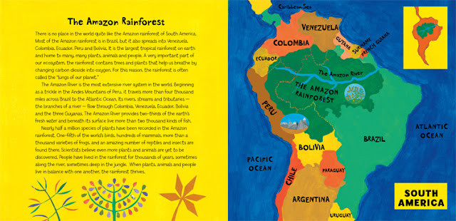 Book Illustration: Roaming in the Rainforest