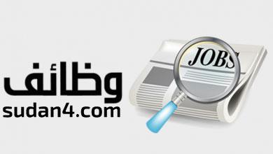 وظيفة محاسب بالسعودية