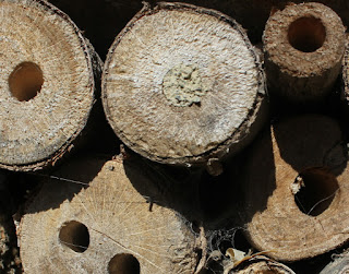 Insect hotel filling up