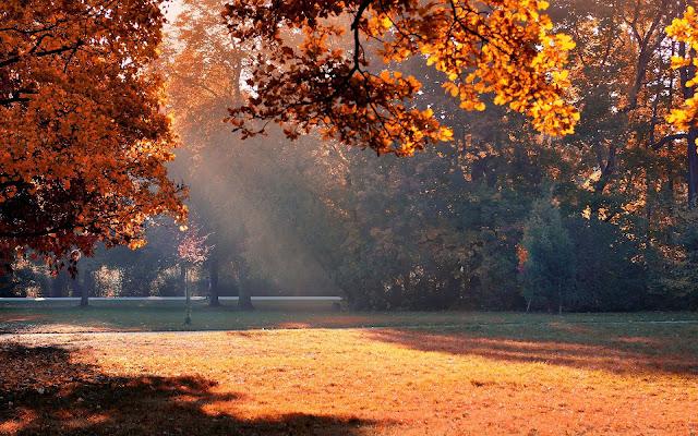 Herfst in Nederland
