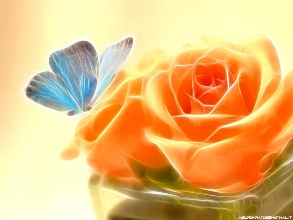 Wallpaper Hd Nature Flower Rose
