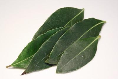 Manfaat Kesehatan, daun salam, bay leaves, manfaat daun salam, kandungan gizi daun salam, herbal, Manfaat Tanaman Herbal,