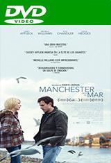 Manchester junto al mar (2016) DVDRip