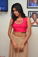 Akshita super cute Pink Choli at south indian thalis and filmy breakfast in Filmy Junction inaguration by Gopichand ~  Exclusive 022.JPG