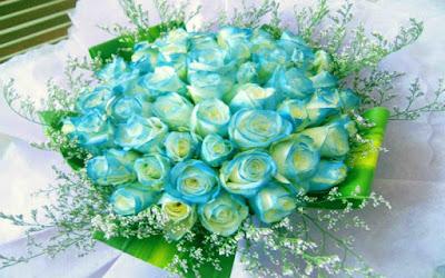 Bo hoa hong xanh dep nhat the gioi