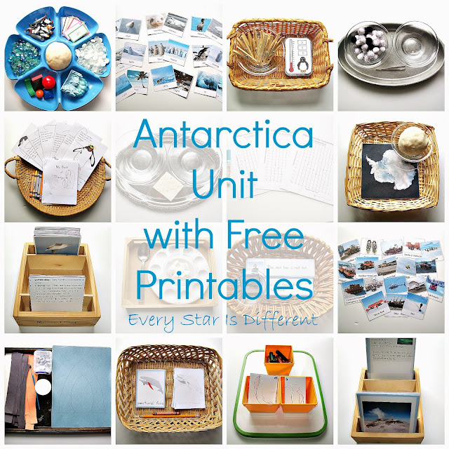 Antarctica Unit