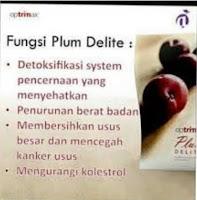 Optimax Plum Delite Promo Murah Banget - Optrimax Buah Kering Sachet Buat Diet Kurus Langsing Alami
