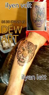 2017, takarás, tigris,szines tetoválás, szeged, tetováló szalon, Szeged, By : Déw art, By: Nagyváti Dávid Déw art szeged,