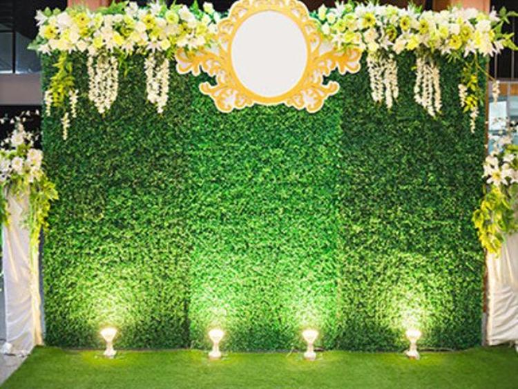 Katebackdrop Para Casamentos