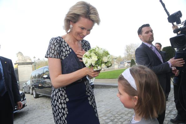 Crown Princess Mathilde attended the 'Inbev-Latour Awards de la Sante 2013' at the Palais des Academies