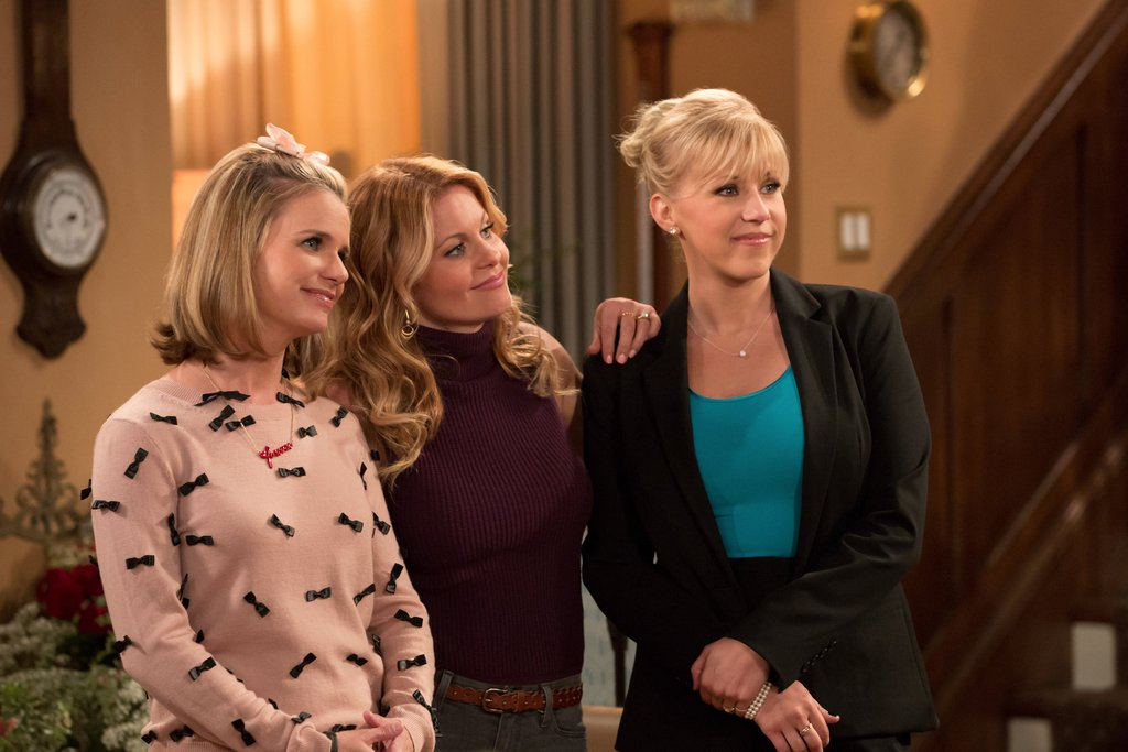 Airplanes and Dragonflies: Fuller House: The Complete ...