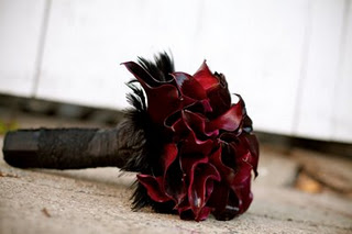 black-feather-calla.jpg