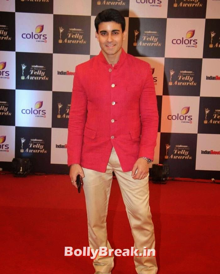 Gautam Rode, Pics on Red Carpet of 13th Indian Telly Awards 2014