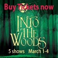 http://www.stagesbloomington.com/p/into-woods.html