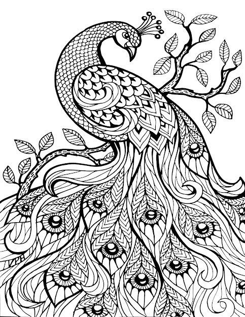 Free Download Adult Coloring Pages Throughout Pictures For Coloring Free  Download Colouring Pages