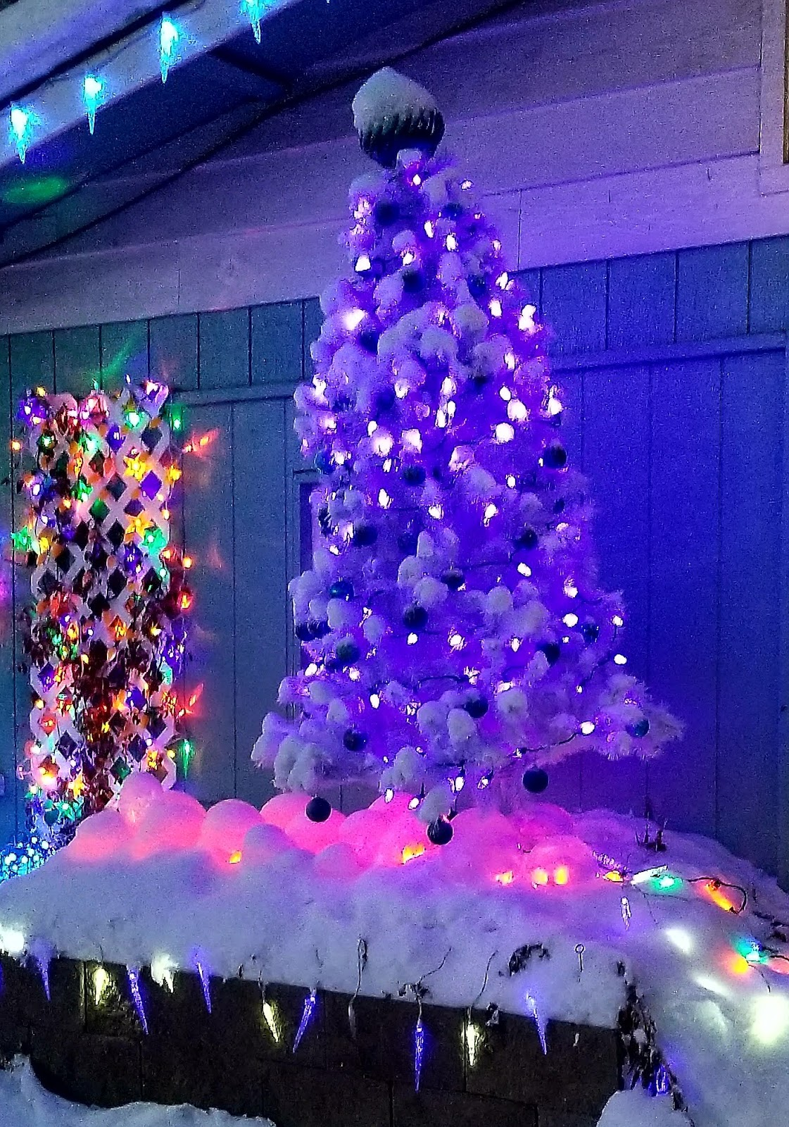 heres what in my raised bed now my own ice garden - When To Take Down Christmas Lights