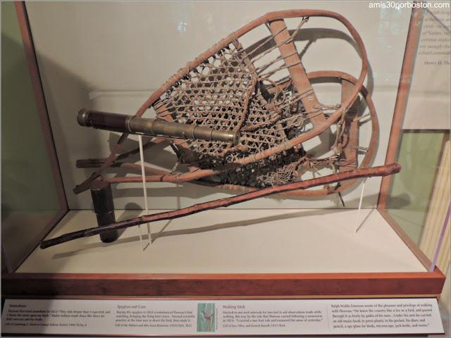 Museo de Concord: Raquetas de Nieve de Henry D. Thoreau