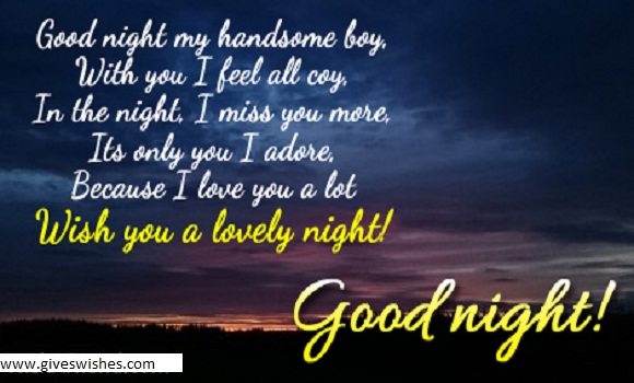 I Dont Have The Words To Express How I Feel With You I Hope You Miss Me Too Good Night My Love