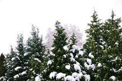 Schnee im Osten...