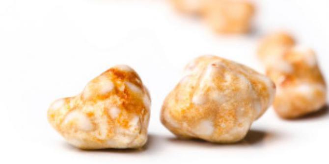 Makanan Pemicu Penyakit Batu Empedu