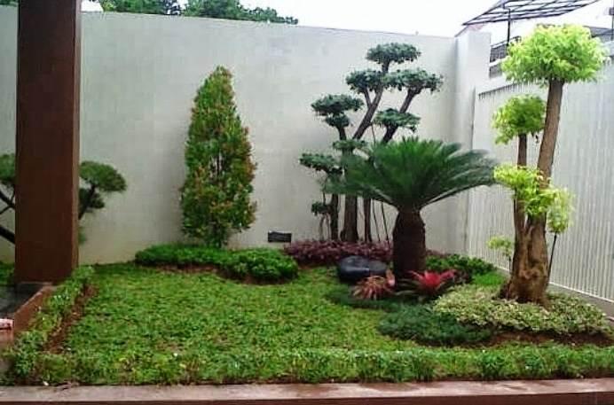Taman Mini Di Sudut Rumah