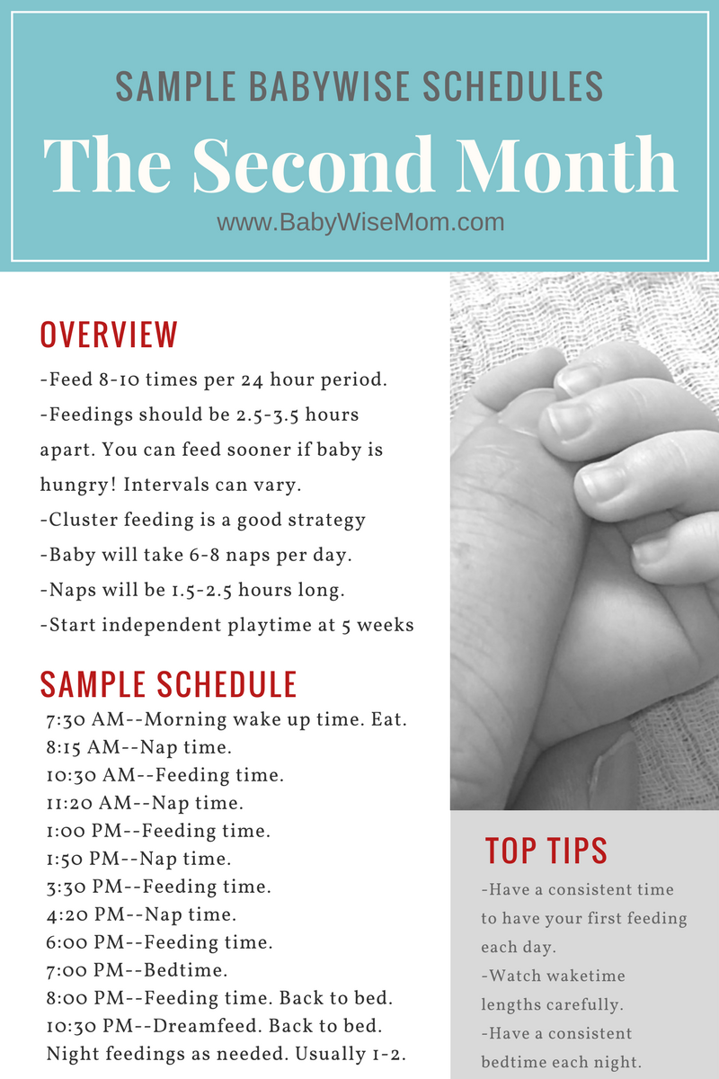 sample babywise schedules: the second month - chronicles of a