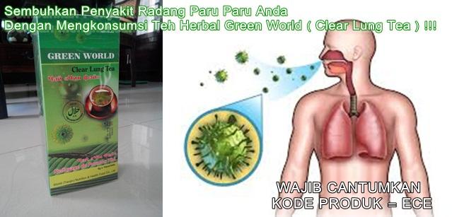 Cara alami menyembuhkan radang paru paru