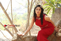 Telugu Actress Zahida Sam Latest Pos in Red Gown at RF Films New Movie Opening  0346.JPG