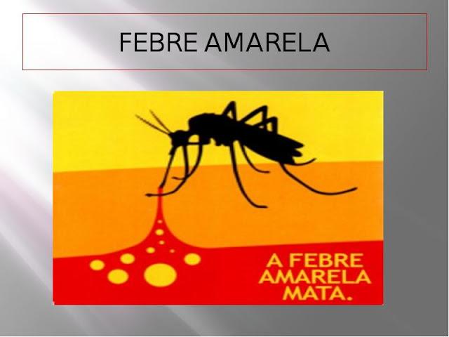 São Paulo  intensifica prevenção contra a febre amarela