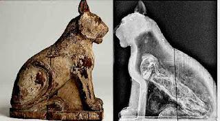 Genuine fake cat mummy from Saqqara in  Egypt