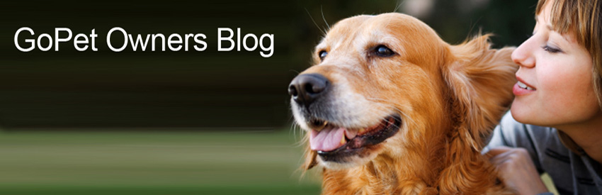 GoPet Owners Blog