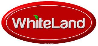 وظائف خالية فى شركة وايت لاند فى مصر 2021