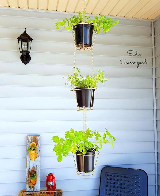 lampshade hanging baskets