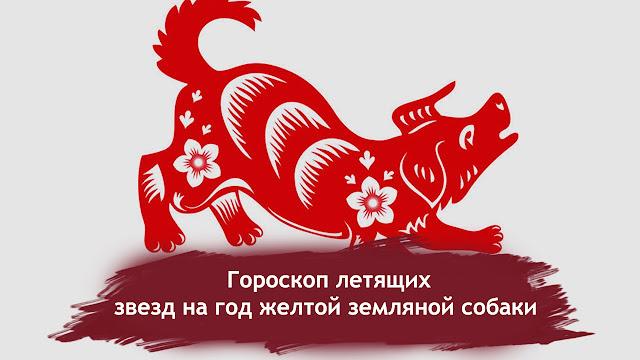 Фен Шуй прогноз на 2018 год: гороскоп летящих звезд на год желтой земляной собаки