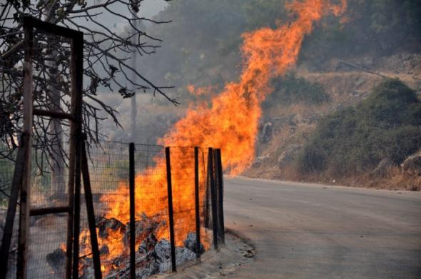 Σε ύφεση η μεγάλη φωτιά στη Χίο - ΦΩΤΟ