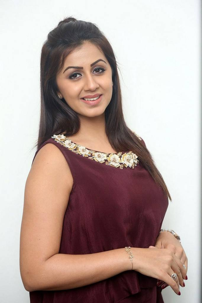 Nikki Galrani Stills At Tamil Movie Press Meet In Maroon Dress