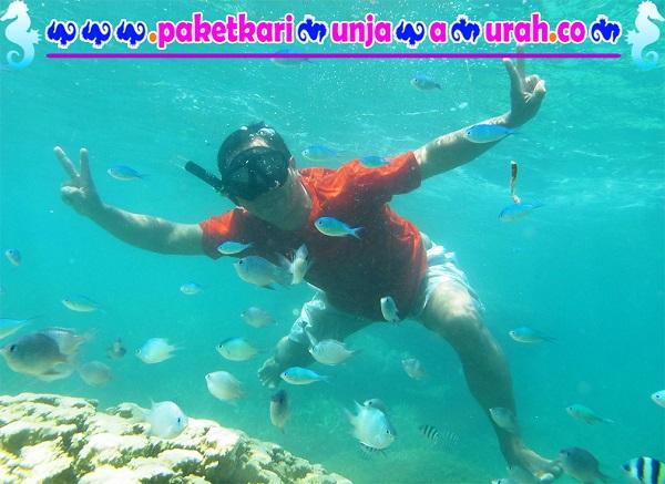 foto snorkeling ambil paket 3h2m karimunjawa murah