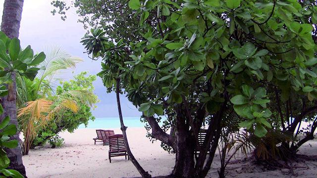 Holiday Island Maldives, Strand (C) Kundenfoto