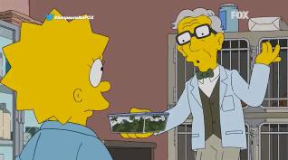 Os Simpsons – 27ª Temporada – Episódio 15 - Assistir Online