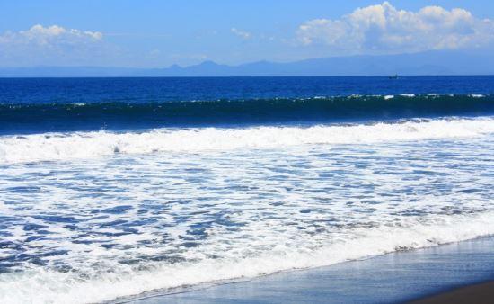 Pantai puger wisata alam di jember